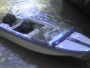 Gacelux Pagliettini lancha -Mercury 150 hp