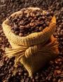 CAFE TOSTADO EN GRANOS Y MOLIDO PARA MAQUINA EXPRESS