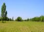Loteo Rural Privado