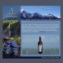 Vinos Solemne | Venta de vinos de Bodegas Viñas del Aconcagua