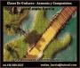 Clases de guitarra en zona norte san isidro armonía y composición