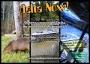 DeltaNow Tour - Tour delta tigre - Paseo en lancha en el Tigre - Exped Experience