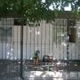 ventas de casas en tunuyan