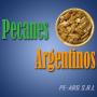 PECANES ARGENTINOS NUEZ PECAN MAXIMA CALIDAD