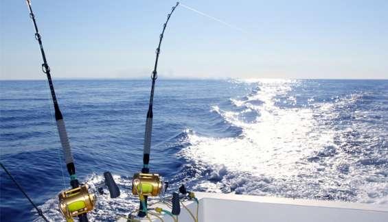 Fabricante de líneas para pesca deportiva.