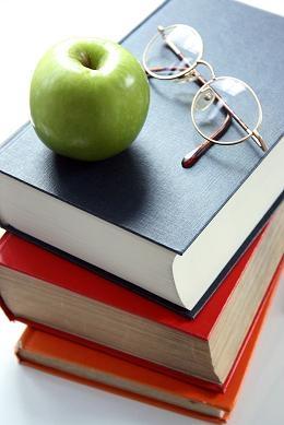 Apoyo escolar: primario y secundario