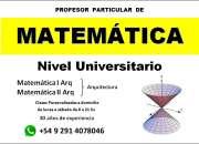 Profesor particular de matemática nivel universitario, en bahía blanca