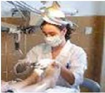 Curso de podoterapia sistema integrativo