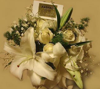 Amarilis flores - floreria