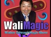 Animacion adultos 4549-2040 magico comico economico