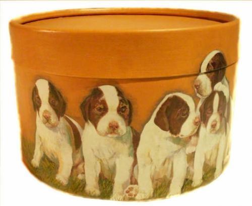 Cajas guarda alimento, juguetes o indumentaria para mascotas