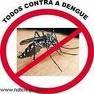 Fumigaciones en general, contra todo tipo de insectos, techos, paredes, etc.