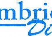 Profesores de Ingles Clases de Ingles Cursos de Ingles CambridgeDirect