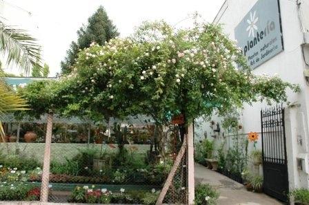 Vendo empresa de servicios de jardinería y vivero. villa urquiza