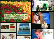 Folletos / Catálogos / Invitaciones