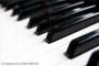Aprenda Piano, Violín, Viola, materias de  carrera  músical