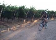 Alquiler de Bicicletas / Rent Bike
