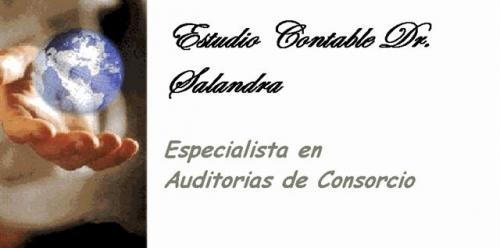 A & c auditor consultor dr salandra auditorias consorcios