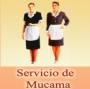 Servicio de limpieza, desinfeccion, domesticas, peones. domestic service argentina.
