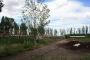 Vendo Parcela de 1,5ha en Km 8 , Guaymallen - Terrenos arbolados vendo ? Mendoza