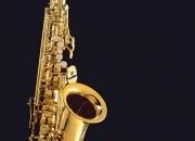 Clases de Saxo en Centro de San Isidro - Zona Norte