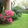 Paisajismo Jardines Hue
