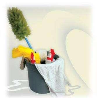 Servicios de mucamas , limpieza cap.federal 43072813