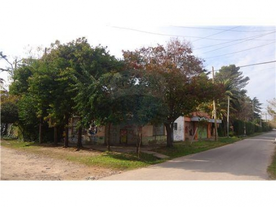 4 locales + vivienda +galpon +garage...