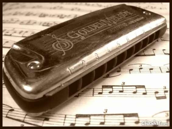 Consulta por clases de armónica en lomas de zamora. buen precio!