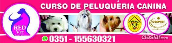 Se ofrece curso peluqueria canina el precio mas bajo.