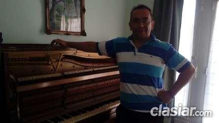 Afine y restaure su piano con carrizo en rosario