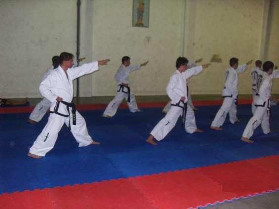 Taekwondo itf villa urquiza nahuel huapi 5891 (villa urquiza- villa pueyrredón)